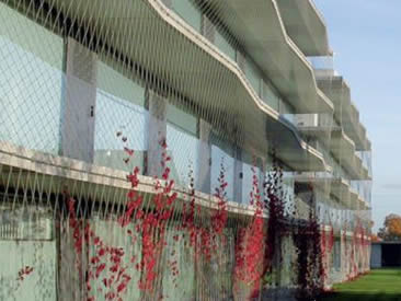 Architectural rope mesh is used as wall cladding and the mesh is covered with red plants.